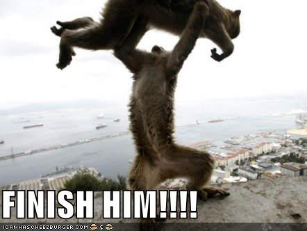 funny-pictures-mortal-kombat-monkey